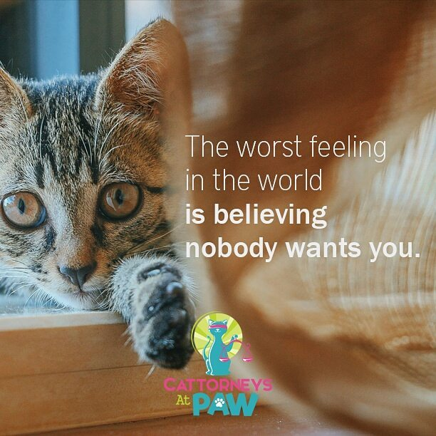 The worst feeling in the world is believing nobody wants you.